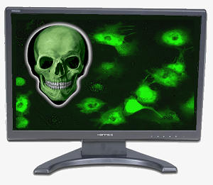 Computer Virus may kill you